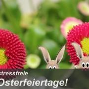 ZIEMER wünscht Frohe Ostern